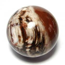 Bois fossile de Madagascar - Boule n°1
