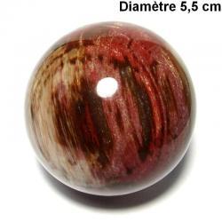 Bois fossile de Madagascar - Boule n°2